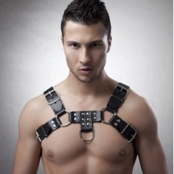 Bulldog Harness deluxe