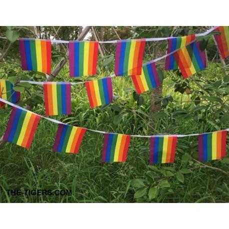 Gay Pride Rainbow Flag 90 x 150 cm
