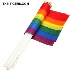 Pride Hand Flagge 14x21cm