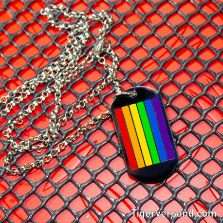 Dog Tag Pride with chain 30 cm brushed stainless steel